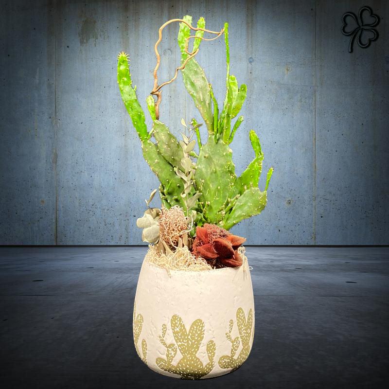 Composizioni floreali di Cactus in ceramica artigianale stile deserto.