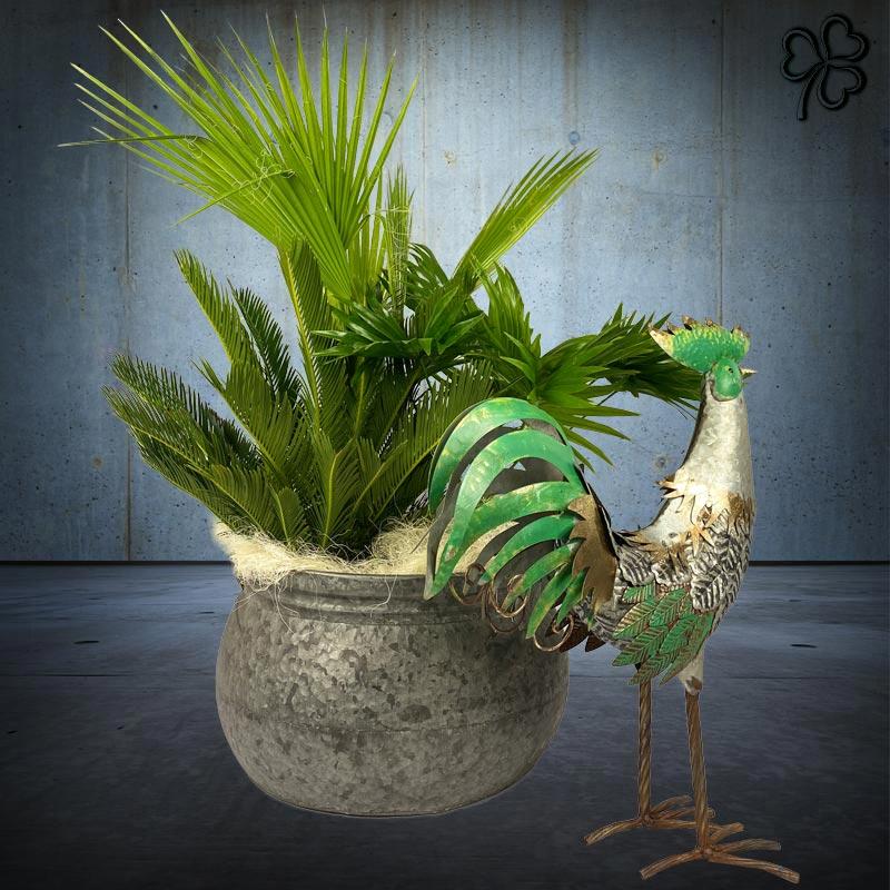Composizioni floreali di piante tropicali - Cycas Revoluta, Chamaerops, Livistona Chinensis - in contenitore di latta e gallo in latta dipinto a mano.