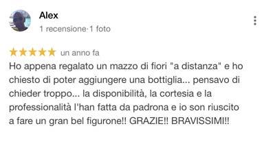 Alex_recensione_google