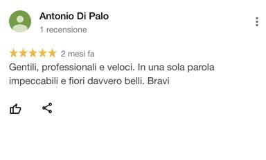 Antonio_Di_Palo_recensione_google