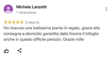 Michaela_Lanzetti_recensione_google