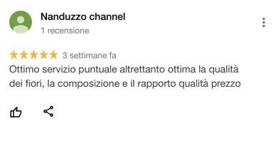 Nanduzzo_recensione_google