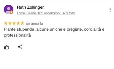 Ruth_Zollinger_recensione_google