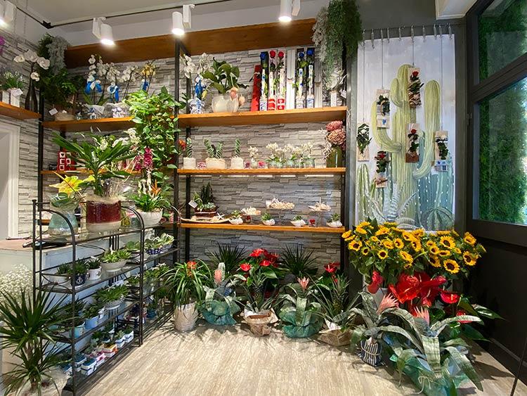 Fioraio Rivazzurra_vista interna del negozio