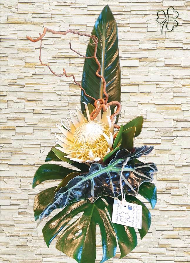 Protea king ciynaroides white decorata con foglie verdi di pregio e nocciolo contorto